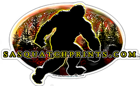 Sawquatchprints.com